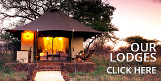 Our-Lodges